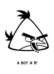 Angry birds раскраска21