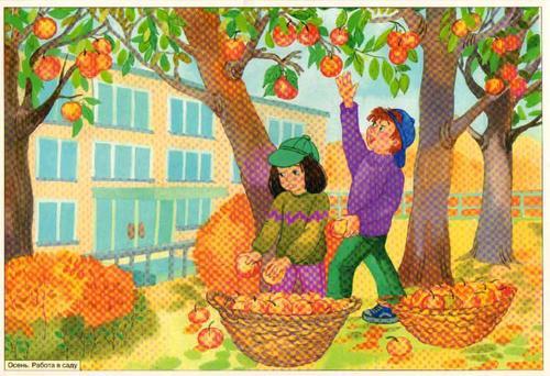 Картинки уборка урожая для детей