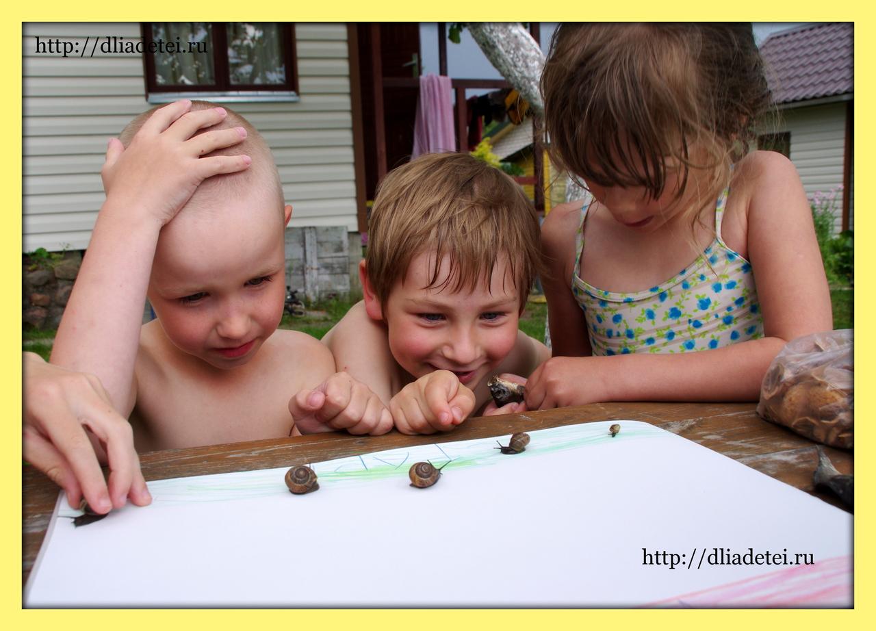 развлечения +для детей +на даче, +чем ...: http://dliadetei.ru/%D0%9D%D0%B0%D1%88%D0%B8%20%D0%B4%D0%B5%D1%82%D0%B8/i4868-ulitochnij-zabeg-a-tochnee-zapolZ/